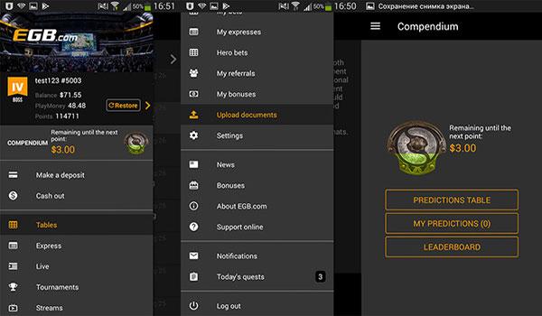 Мобильное приложение EGB